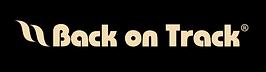 Back on Track Logo.png