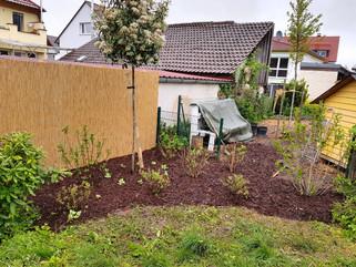 Patrick Beying | Garten- & Landschaftsbau