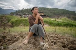 Bhoutan/ Punaka