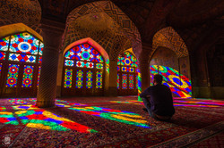 Shiraz/Iran