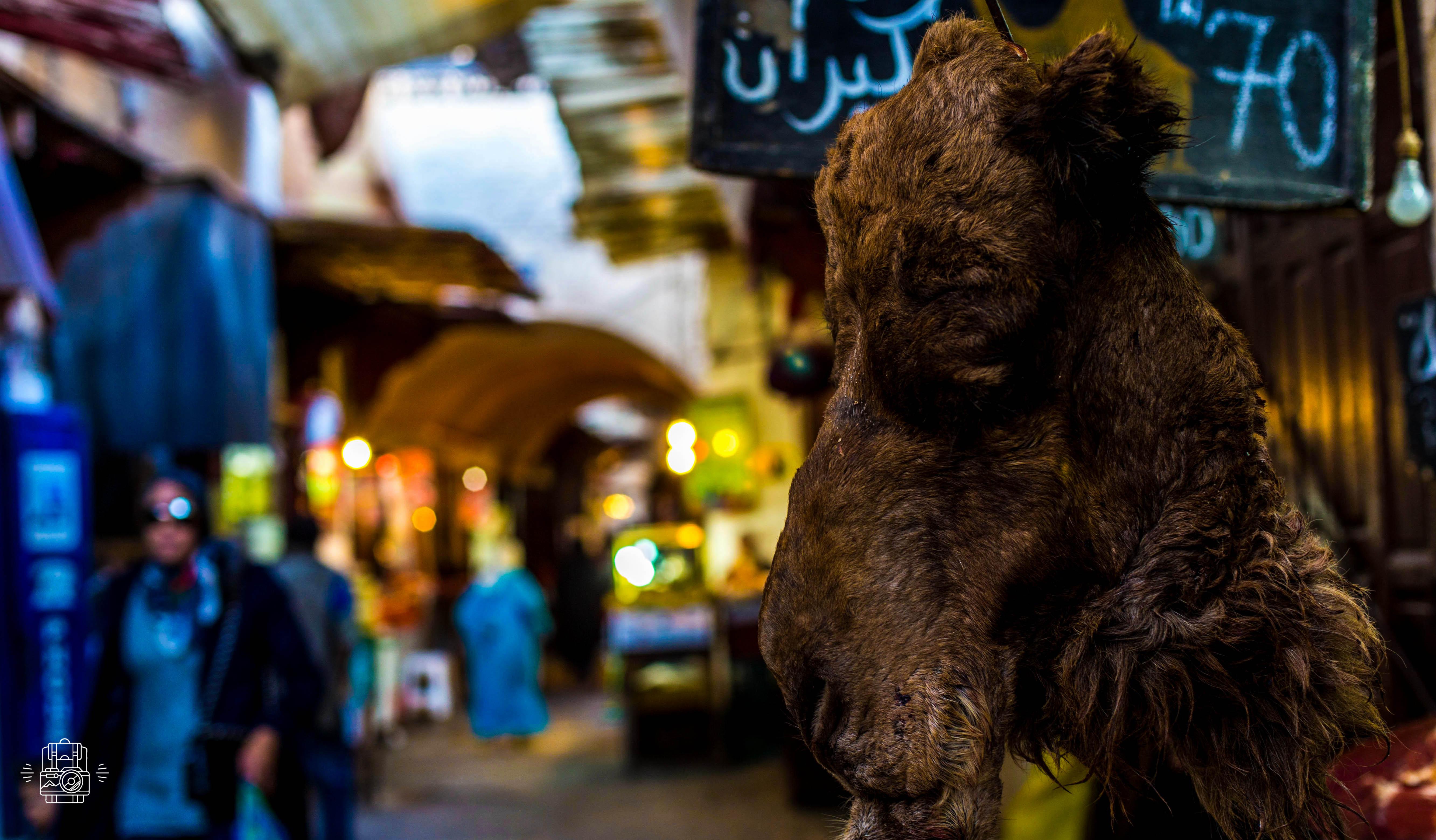 Maroc/Meknes