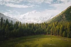 Pakistan/Fairy meadows