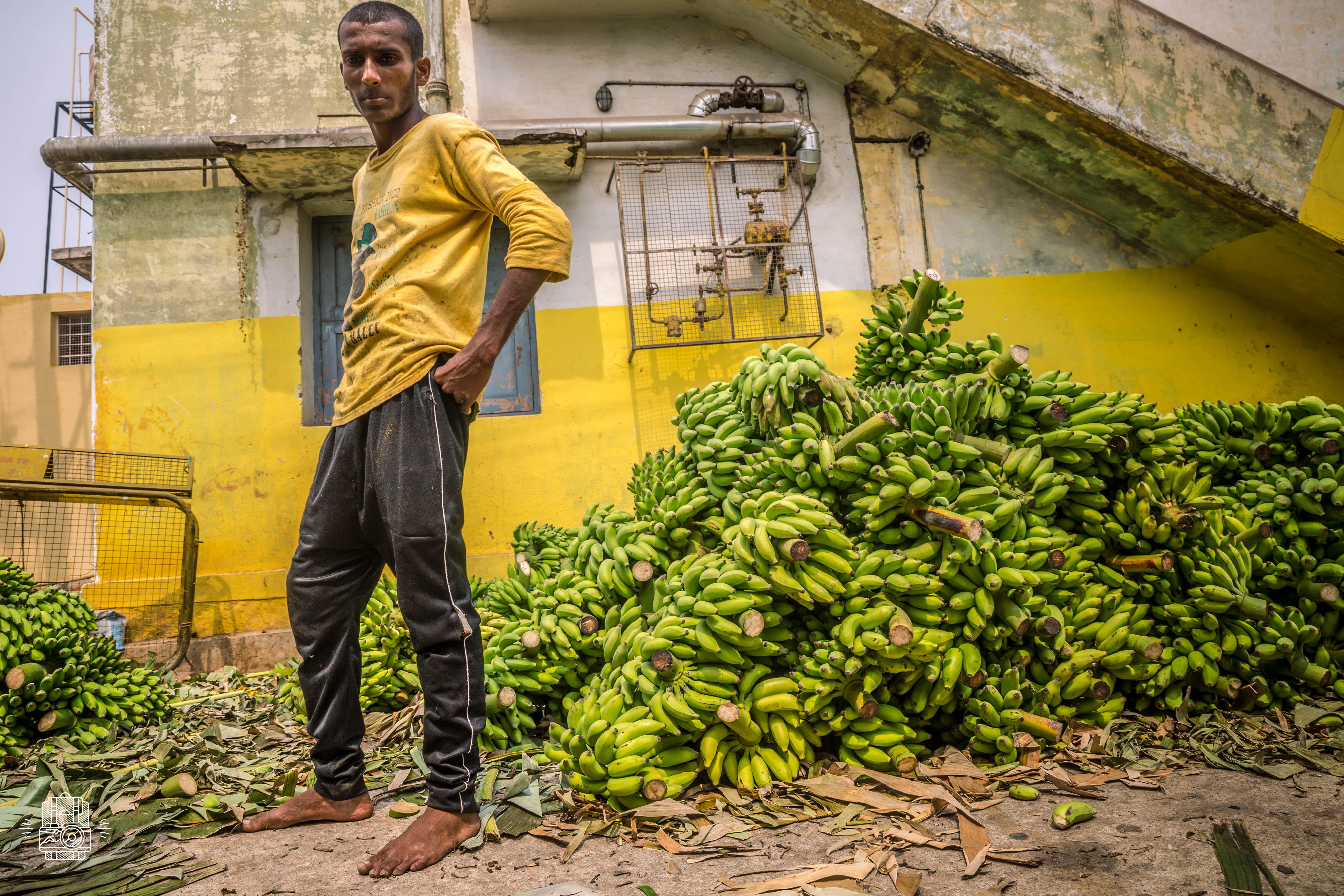 Inde/Mysore
