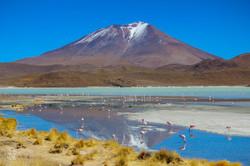 Laguna colorada/Chili