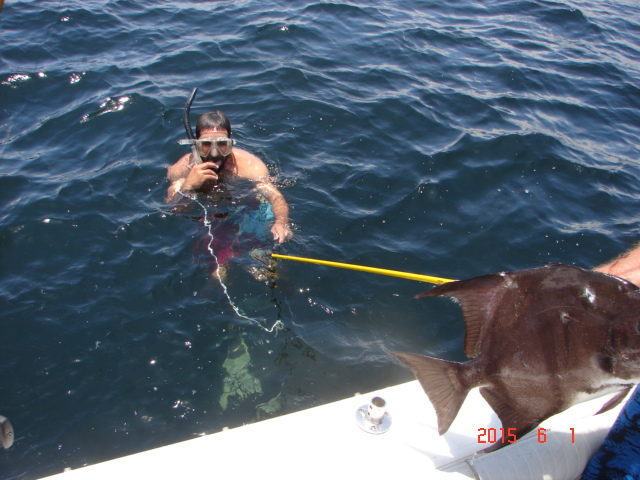 Spearfishing -