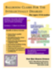 Special needs flyer young group.jpg