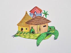 l'île tortue