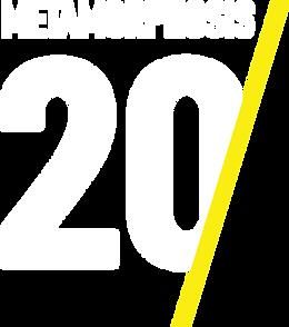 2020meta-1.png