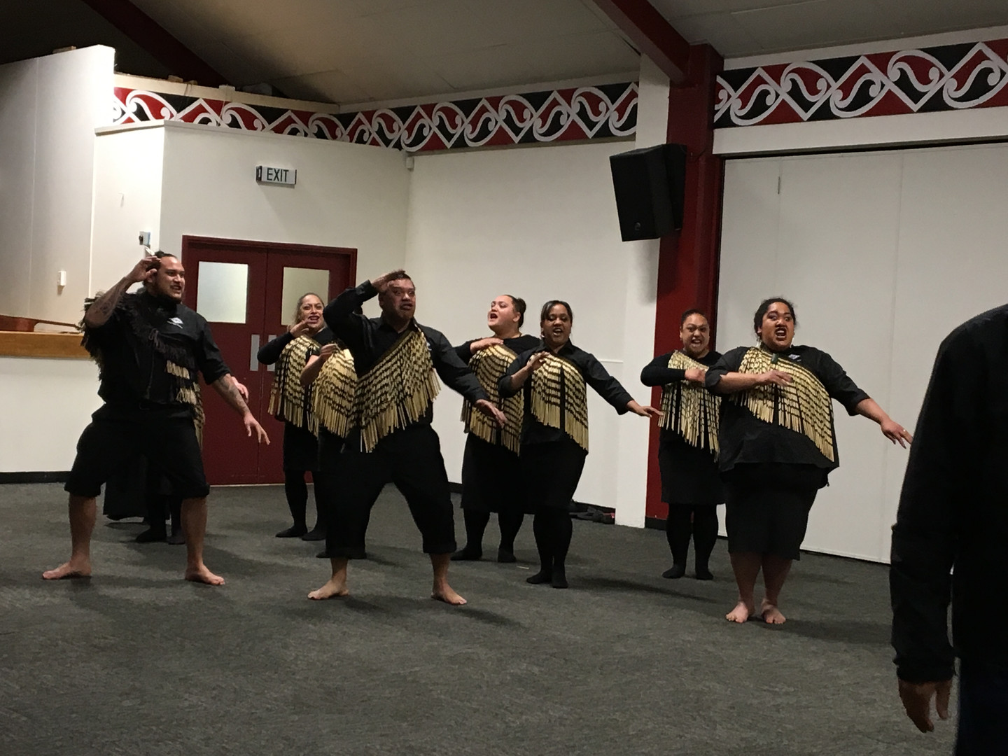 Official traditional Maori welcome at Pi