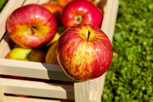 Red Delicious US Apples