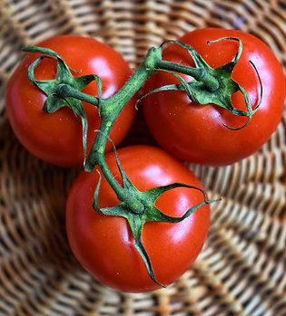 Farm Fresh Roma Tomatoes