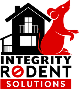 SWAIM RED LOGO GRAPHIC FLOATING.png