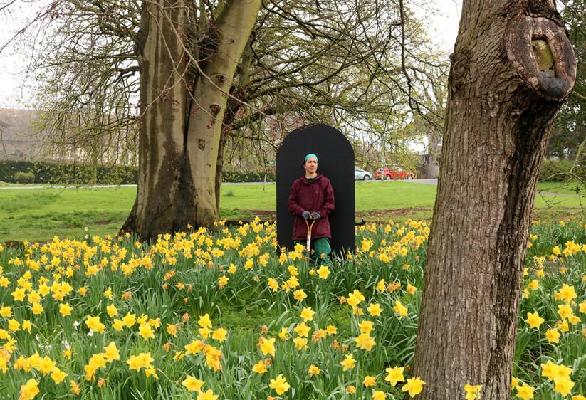 Daffodil Portal (Claire)