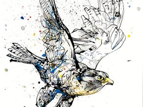 Kathryn Callaghan | Artist Focus: 20th - 24th Oct 2020