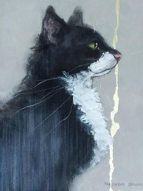 Sylvia Parkinson-Brown  | White Bib Cat