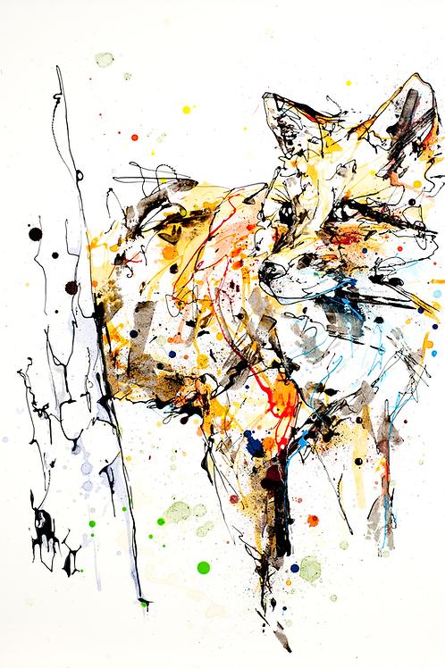 Kathryn Callaghan | Around the Corner Fox Original