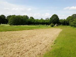 Um den Abschlag C1 auf dem Golfplatz in Sülfeld wird es bunt!  Golf und Artenschutz durch mehr blühe