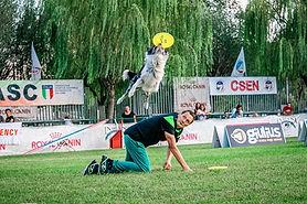 kikidiscdog.jpg