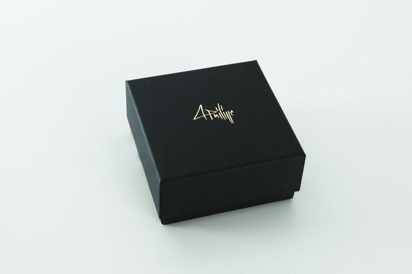 La boite de l'écrin | the box of the case