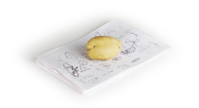 Presse papier patate Le Design Français