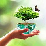 biodiversité.jpg