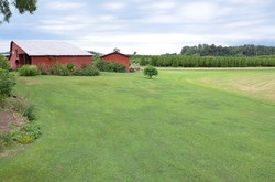 Red Barn Pasture