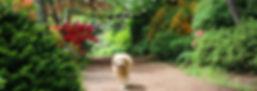 (보정)IMG_9165.jpg