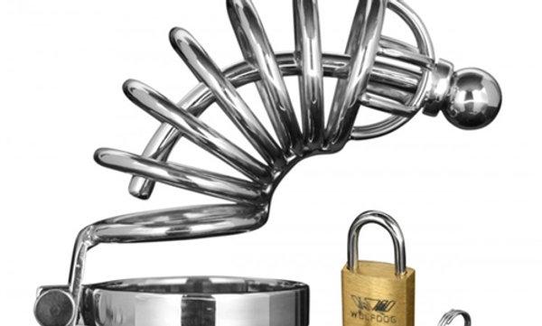 Asylum 6 Ring Locking Chastity Cage  - Medium/large