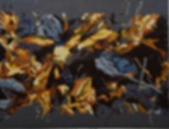 Falmer gylden, 70x90 cm