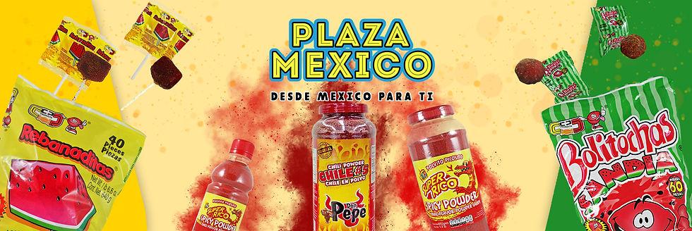 Plaza Mexico Banner.jpg