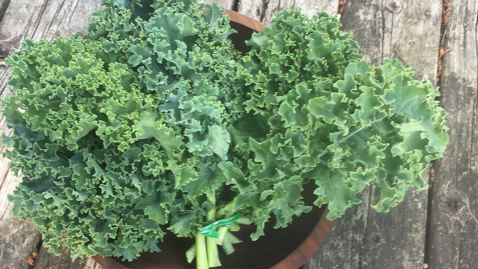 Curly Kale - bunch