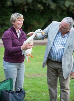Time and Space Media | Ducks | Events Photography