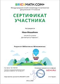 сертификат участника межд олимп по матем