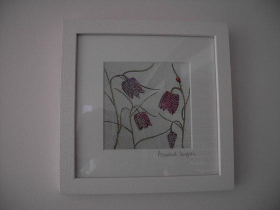 FLOWER (fritillaries)