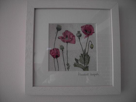 FLOWER (poppies)