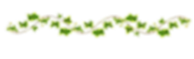 203417_flower-vine-png_edited.png