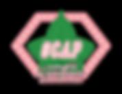 hashtag-cap-logo-2.png