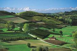Bologna - Tourism Land Development