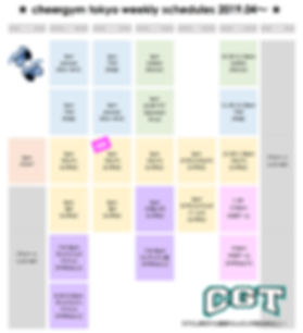CGT NEW SCHEDULES.png