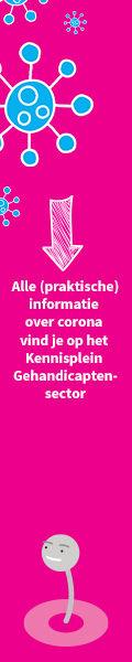 Informatie-banner_Skyscraper_120 x 600.j