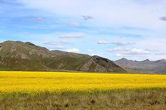 Peru 2013 1187.jpg
