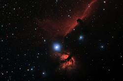 Nebulosa testa di cavallo2