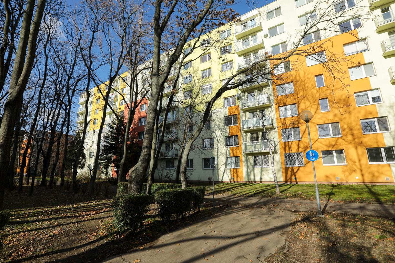 Muskatova-19 (2 of 18).jpg