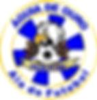 Ala Futebol