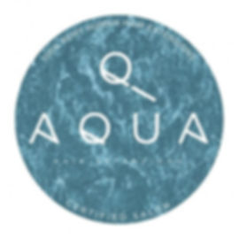 Aqua-Hair-Extensions-Window-Cling.jpg