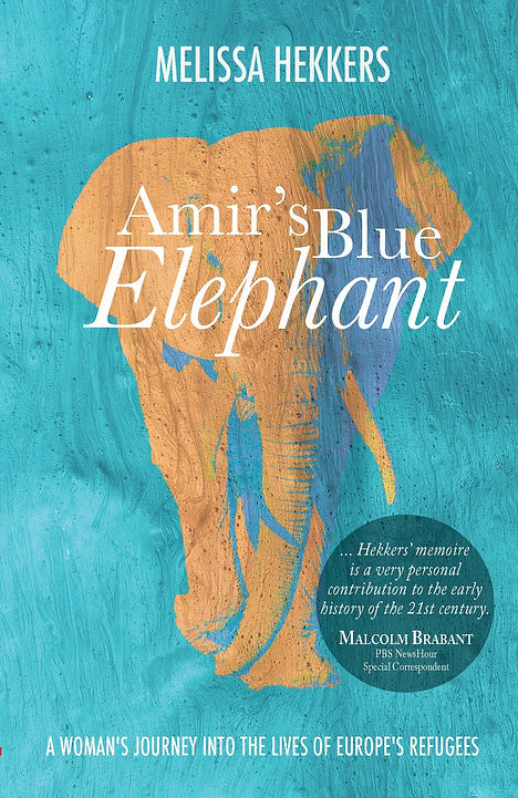 Amir's Blue Elephant Book Cover