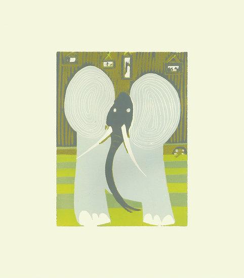 Elephant(s)