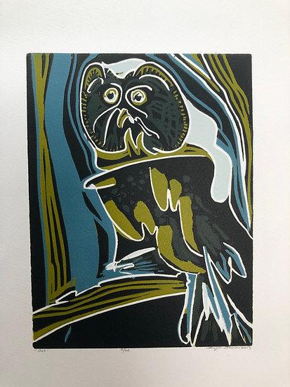 """ Owl """