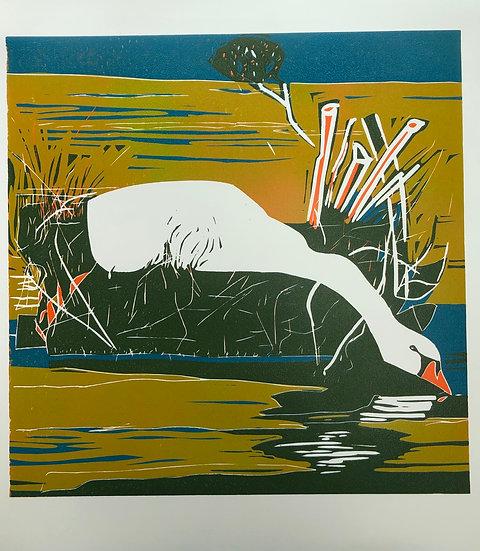 """ Nesting Swan """