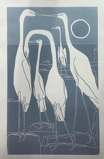 """"""" Herons Gathering """""""